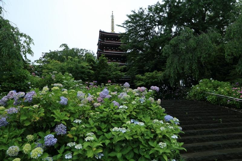 hondoji0612_0008f.jpg