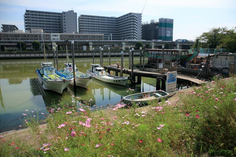 shinagawa-hk_0005f.jpg