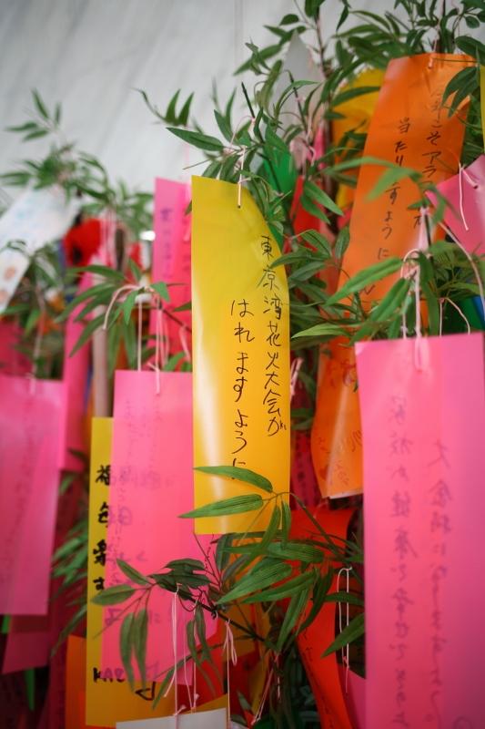 toyosu0706_0034f.jpg