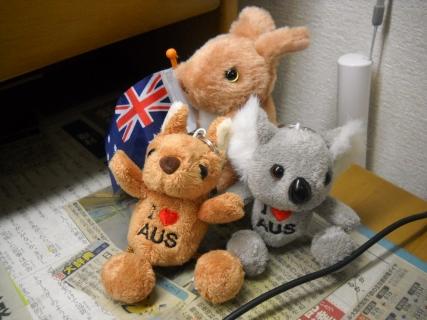 オーストラリアから帰国いたしました!