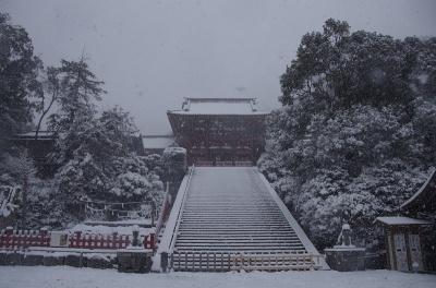 雪の八幡宮