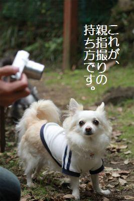 IMG_6090.jpg