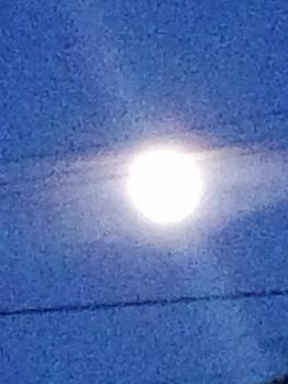 20130524明日は満月~♪