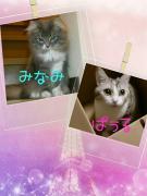 20140929001800481.jpg