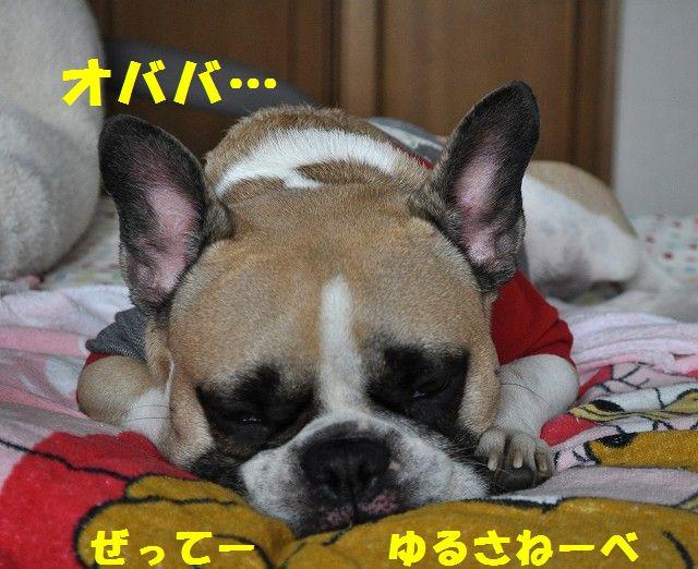 001_20131110103853f5e.jpg