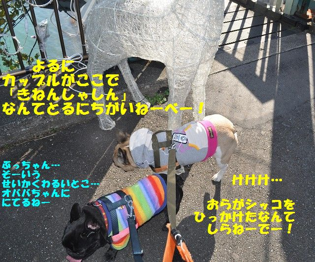 037_20131124151420600.jpg