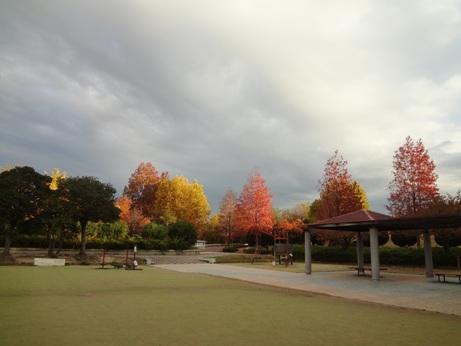 25秋緑地公園