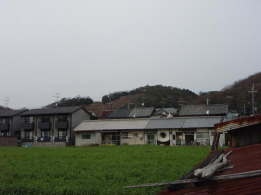 20130327-1348.jpg