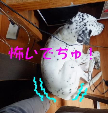 2013_0916_101841.jpg