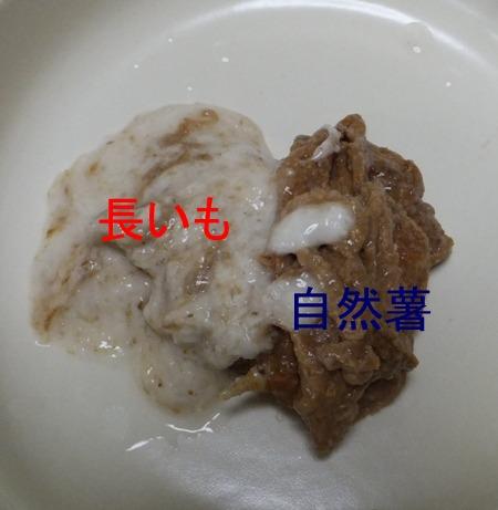 2013_0929_123230.jpg