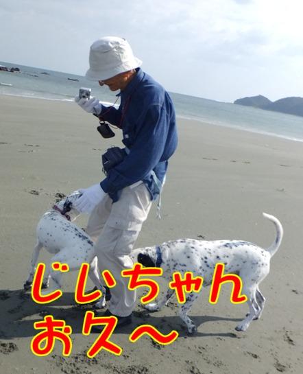 2013_1027_125016.jpg