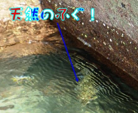 2013_1027_131053.jpg