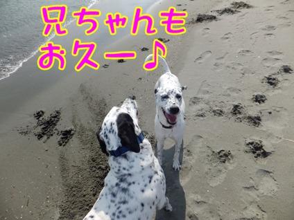 2013_1027_132356.jpg