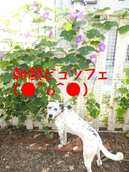 blog0622_163621.jpg
