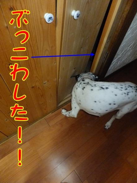 blog0903_165445.jpg