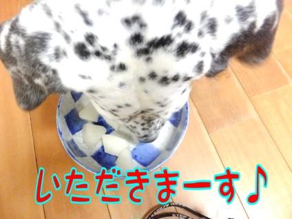 blog3_0907_185042.jpg