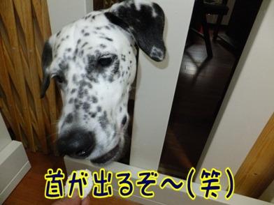 blog_0602_173837.jpg