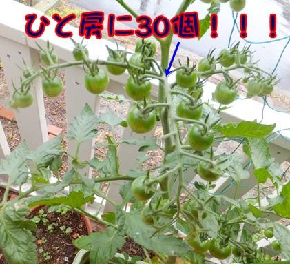 blog_0619_164253.jpg
