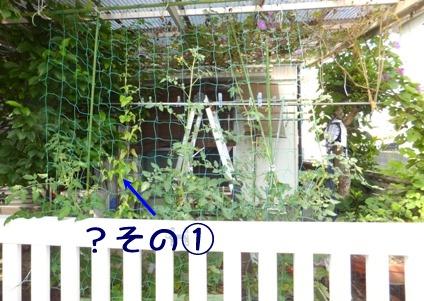 blog_0622_164011.jpg
