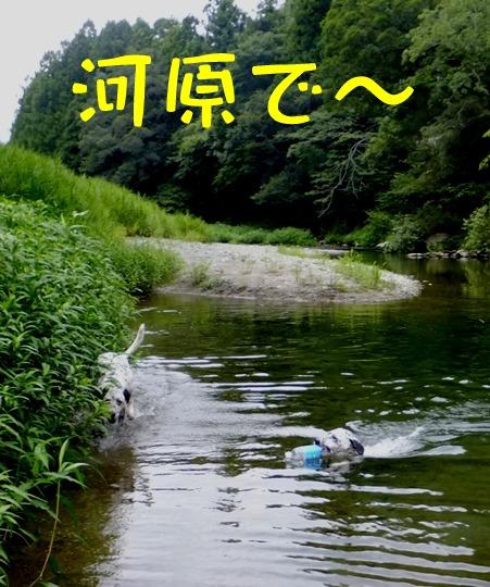 blog_0803_105057.jpg