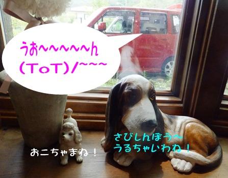 blog_0803_120549.jpg