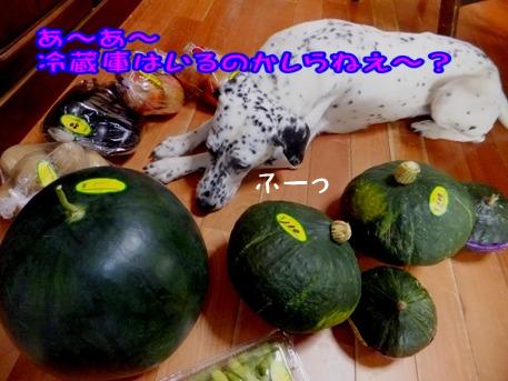 blog_0803_170456.jpg