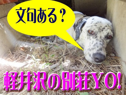 blog_0818_111009.jpg