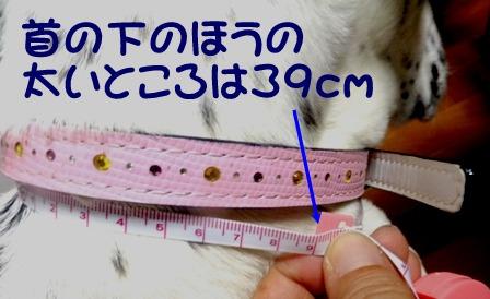 blog_0831_150413.jpg