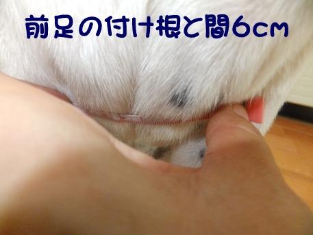 blog_0831_151546.jpg