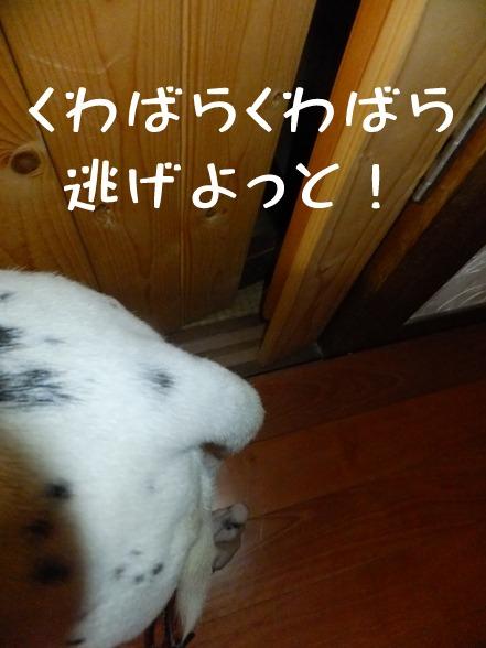 blog_0903_165358.jpg