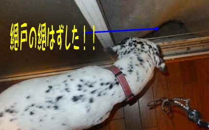 blog_0903_165542.jpg