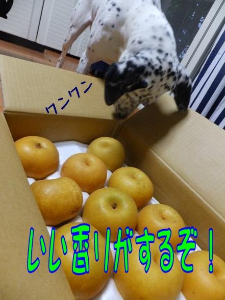 blog_0907_183505.jpg