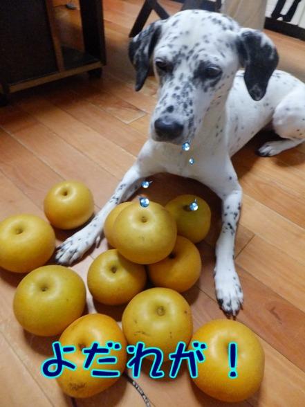 blog_0907_183944.jpg