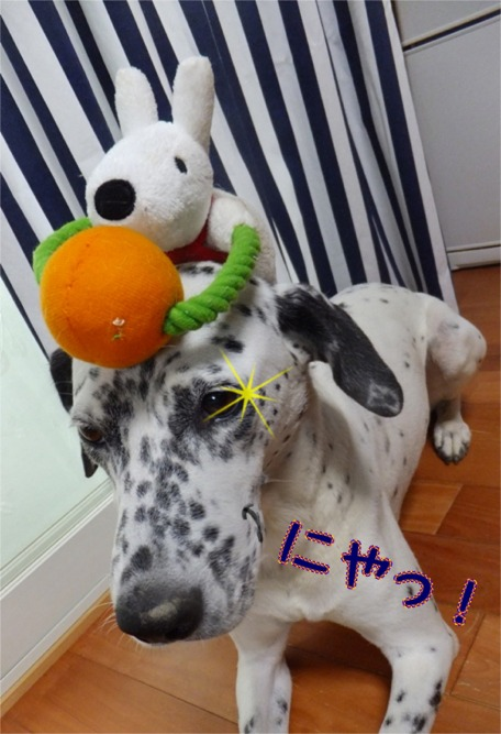 blog_0908_165809.jpg