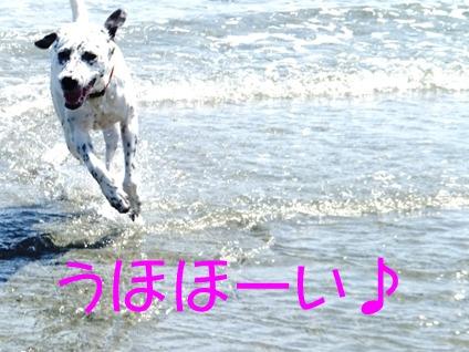 blog_0921_123628.jpg