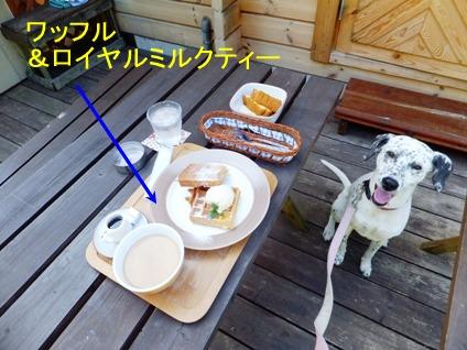 blog_0921_141742.jpg