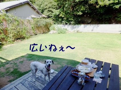 blog_0921_143754.jpg