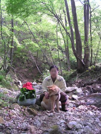 2003年秋-奥新川渓谷1