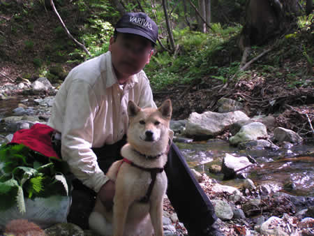 2003年秋-奥新川渓谷2