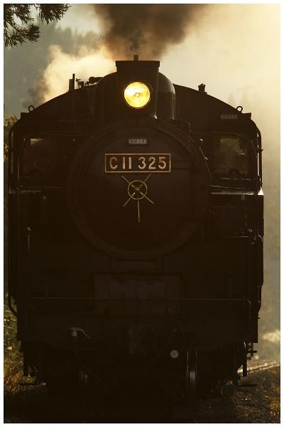 11IMG_6420-2o.jpg