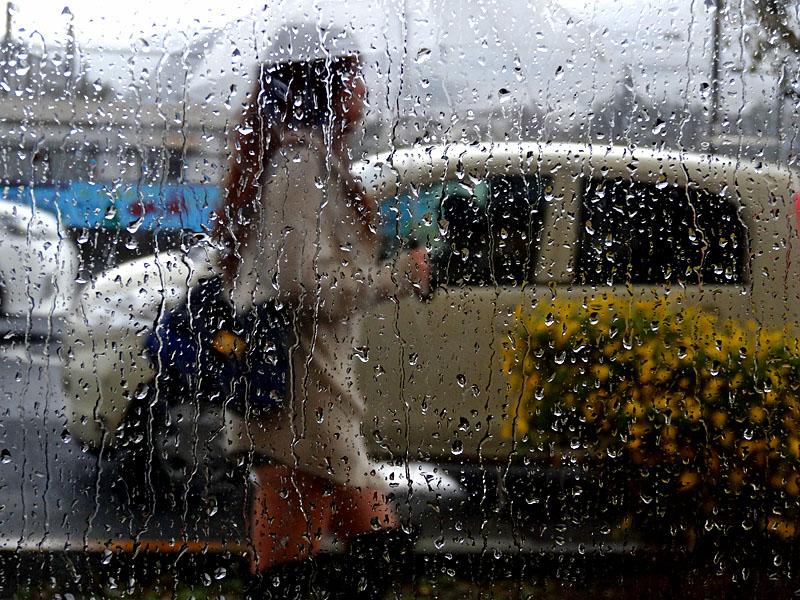 131110雨の日曜日3
