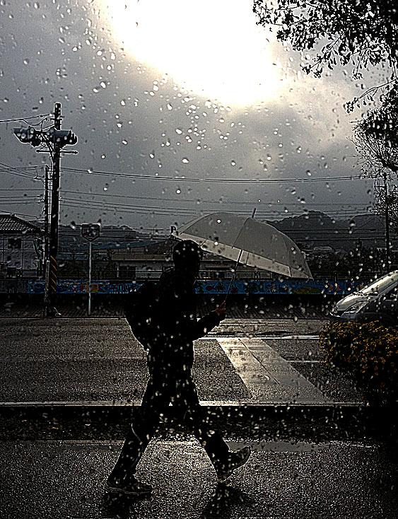 131110雨の日曜日4