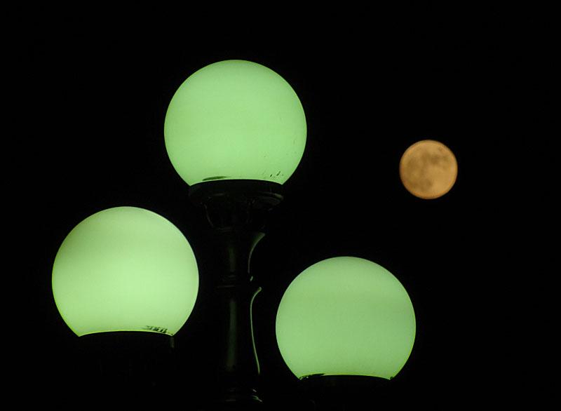 131117ヴェルニー公園と満月5