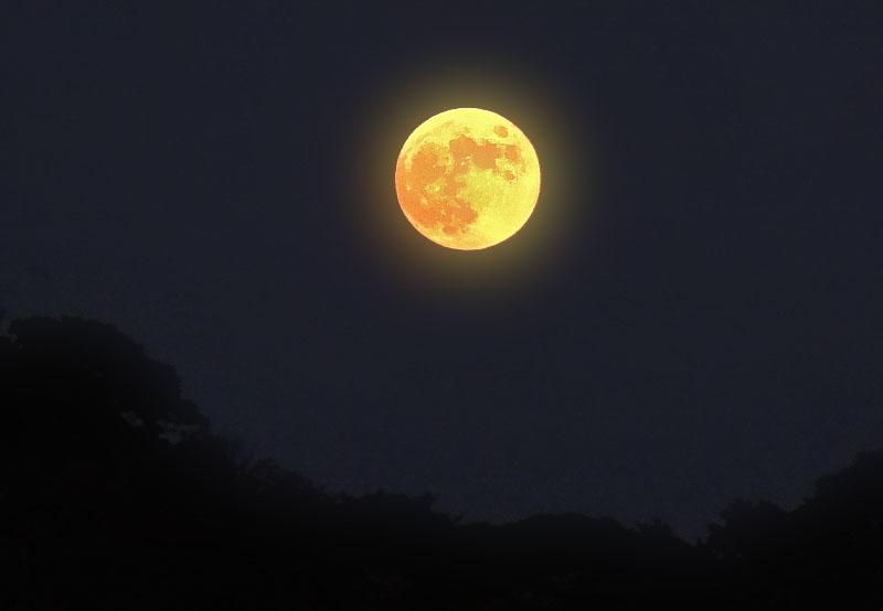 131117ヴェルニー公園と満月6