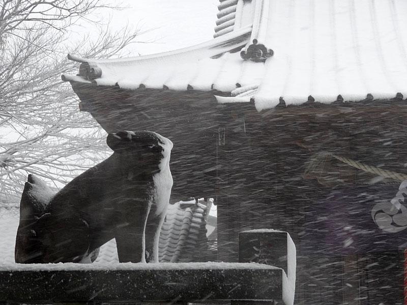 140208大雪04