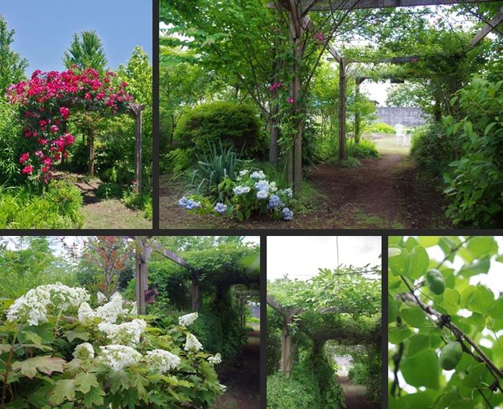 2014-05-31 2014-05-31 002 085 - コピー-horz-vert