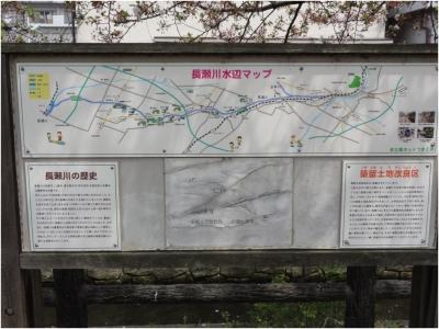 志紀八尾250414_24