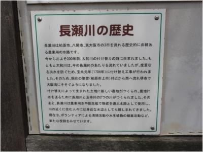 志紀八尾250414_25