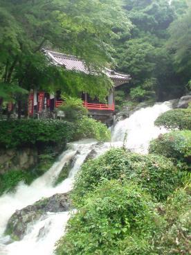 大瀧さんの滝!・・・いつも以上に流れてます!!笑