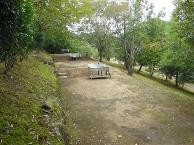 森よこ3(640)